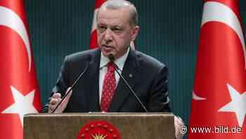 Türkei: Erdogan Polizei verprügelt jetzt Anwälte - BILD