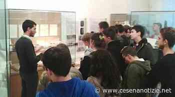 A Savignano sul Rubicone riapre al pubblico il Museo archeologico del Compito - CesenaNotizie.net - cesenanotizie.net