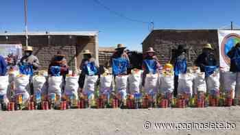 Entregan alimentos a 238 familias que viven a orillas del lago Poopó - Pagina Siete