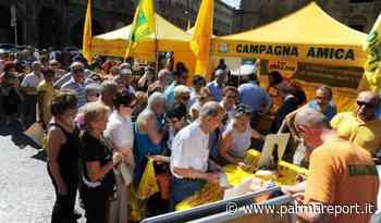 """Coldiretti Parma: Tizzano si tinge di giallo con il mercato """"Campagna amica"""" - parmareport.it"""