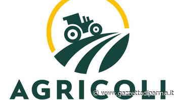 Agricoli, sfide in campagna - Gazzetta di Parma