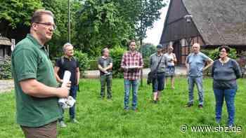 Natur: Eine Waldbegehung in Uetersen, bei der genau hingeschaut wird | shz.de - shz.de