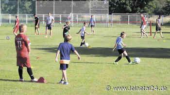 TSV Gronau lädt Kinder zum Schnuppertraining ein - leinetal24.de