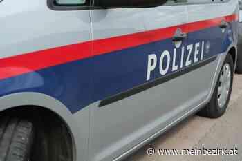 Schwarzau am Steinfeld: Neuer Kommandant für die Polizeiinspektion Schwarzau ist fix - meinbezirk.at
