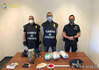 Gdf sequestra 1,3 chili di marijuana a Prato alla Drava - Agenzia ANSA