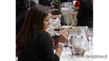 Tirocinante per degustazione di vini a San Gimignano Operatore socio-sanitario per sostituzioni - LA NAZIONE