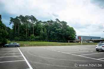 Gemeente in hoger beroep tegen parking en opslag in industriezone in Vogelsanckbos - Het Belang van Limburg