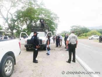 SSyPC detiene a presunto responsable del delito de abigeato, en Pijijiapan - ChiapasHoy