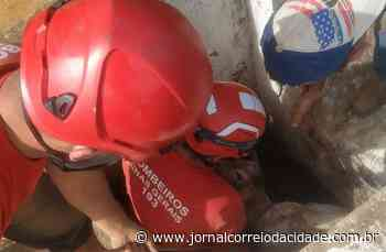 Bezerro é resgatado em local de difícil acesso em Ouro Branco   Correio Online - Jornal Correio da Cidade