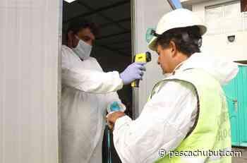 Coronavirus: investigan posibles contactos estrechos en el puerto de Mar del Plata - pescachubut.com