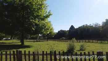 Noisiel veut valoriser ses espaces naturels cet été - Le Moniteur de Seine-et-Marne