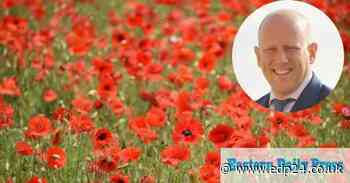 Popular poppy field to be turned into industrial estate - Eastern Daily Press