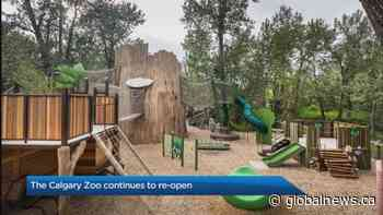 The Calgary Zoo continues to reopen