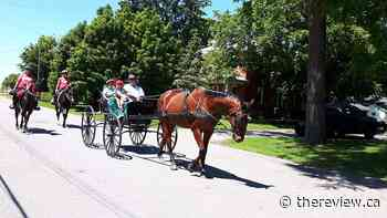 2020 Vankleek Hill Horse and Buggy Parade to be held online from July 1-5 - The Review Newspaper