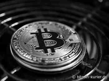 BTCPay Server erhält 150.000 US-Dollar Förderung von Kraken - Bitcoin Kurier