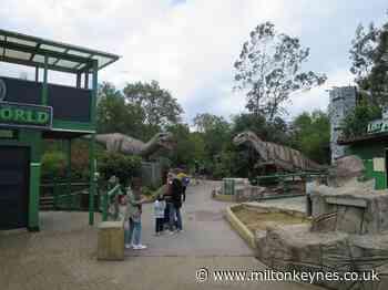 Visit the T-Rex Treks at Gulliver's Dinosaur Park in Milton Keynes - Milton Keynes Citizen