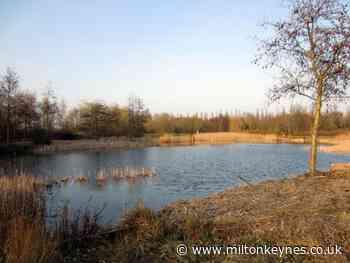 Arsonists strike for the third time during lockdown at Milton Keynes nature reserve - Milton Keynes Citizen