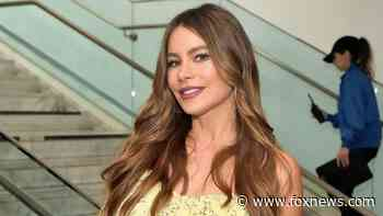 Sofia Vergara shares sultry throwback picture with different hairstyle - Fox News