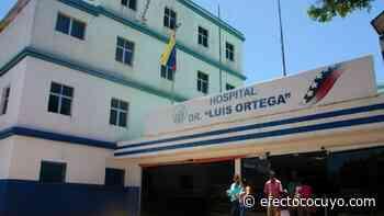 Fallas en la terapia neonatal del Luis Ortega alerta personal del hospital margariteño - Efecto Cocuyo