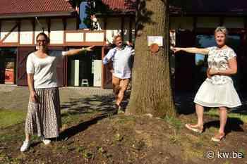 Boekenspeurtocht is coronaproof alternatief voor boekenfeest in Zonnebeke - Krant van Westvlaanderen