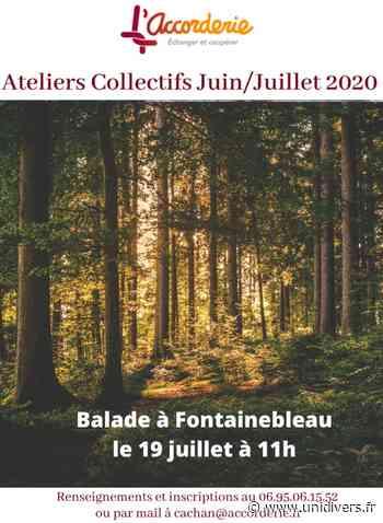 ballade à fontainebleau cachan,avenue victor hugo à l'arrière du 179 avenue aristide briand dimanche 19 juillet 2020 - Unidivers