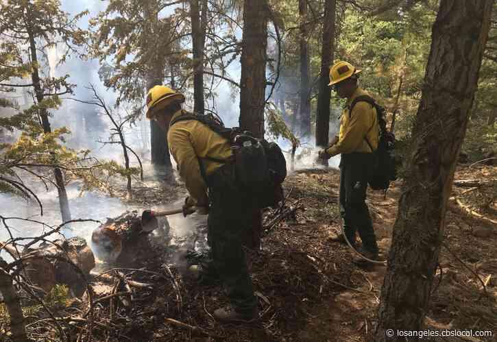 Illegal Campfires In San Bernardino Mountains Up 150% This Year