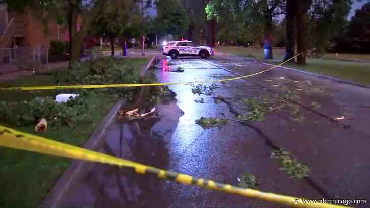 Fierce Summer Storms Bring Down Trees and Power Lines in Chicago Area