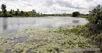 Fisherman reports seeing an alligator in Lake Glenview