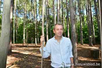 """Schooldirecteur betreurt petitie tegen bomenkap achter school: """"Die naaldbomen vormen een gevaar voor de kinderen"""""""