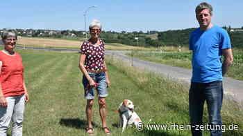 Solidarische Landwirtschaft gründet sich: Katringer Grünzeug soll Menschen zusammenführen - Rhein-Zeitung