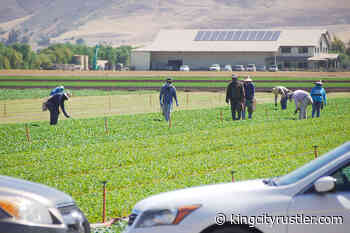Monterey County's Covid-19 infection rates highest in agriculture | The - King City Rustler