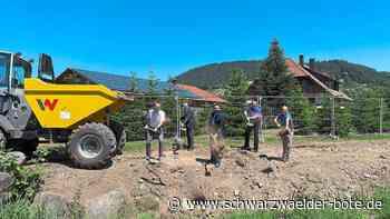Haslach i. K.: Besserer Schutz für Bollenbach - Schwarzwälder Bote