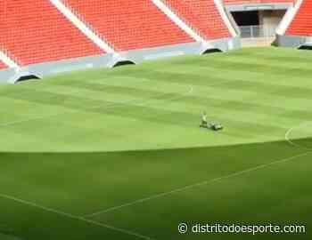 Gramado do Mané Garrincha recebe atenção durante pandemia - Distrito do Esporte