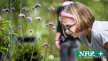Kamp-Lintfort: Kinder basteln sich Traumgärten zum Mitnehmen - NRZ