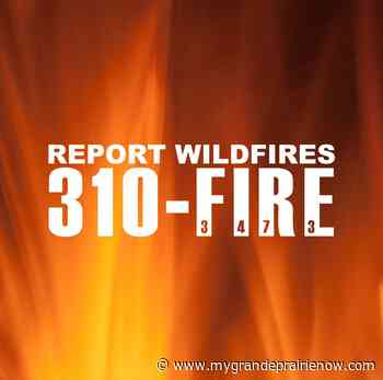 Grande Prairie area wildfire danger now high - My Grande Prairie Now