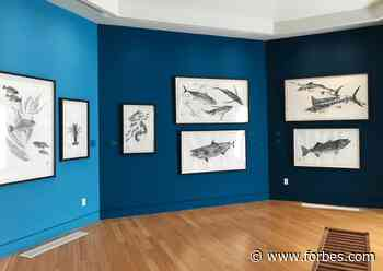 Catalina Island Museum Introduces Audiences To 'Gyotaku' Through Artist Dwight Hwang - Forbes
