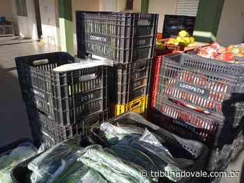 Ibaiti distribui kits de alimentos para alunos da rede de ensino - Tribuna do Vale