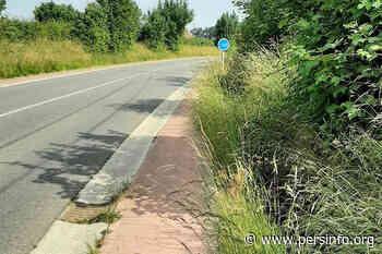 Geen veiligheidsmaaien langs de fietspaden in Pepingen - Persinfo.org