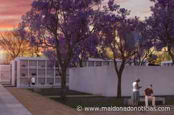 Se realizó apertura de ofertas para ampliación de cementerios de Maldonado y Pan de Azúcar - maldonadonoticias.com