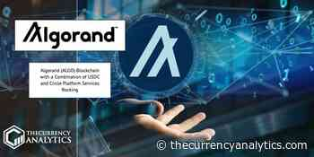 Algorand (ALGO) Blockchain with a Combination of USDC and Circle Platform Services Rocking - The Cryptocurrency Analytics