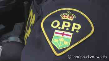South Bruce OPP investigating a report of animal cruelty in Chesley - CTV News London