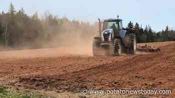 Prince Edward Island potato growers 'very concerned' by drought - Potato News Today