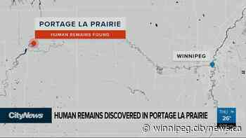 Human remains discovered in Portage la Prairie - CityNews Winnipeg