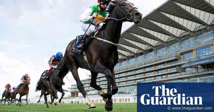 Pyledriver a genuine Derby hope for 'bits and bobs' owner Guy Leach | Chris Cook