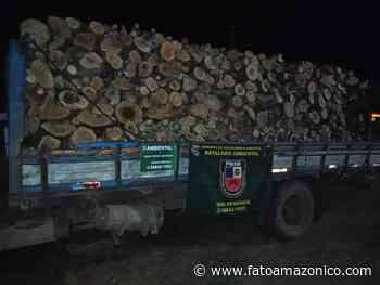 Policiais militares do CPAMB e BPAMB apreendem madeira ilegal em Manacapuru - Fato Amazônico