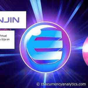 Enjin Coin (ENJ) Witek on Virtual Identities and Digital Assets Ilija on Product Ecosystem - The Cryptocurrency Analytics
