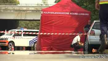 Fietser komt om bij ongeval in Overpelt - TV Limburg
