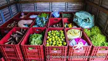 MST doará alimentos para famílias carentes de Loanda e Santa Isabel - ® Portal da Cidade | Paranavaí