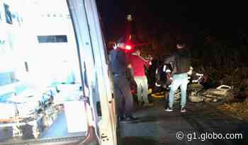Vigilante fica ferido após atropelar capivara em estrada de Valinhos, diz Guarda - G1