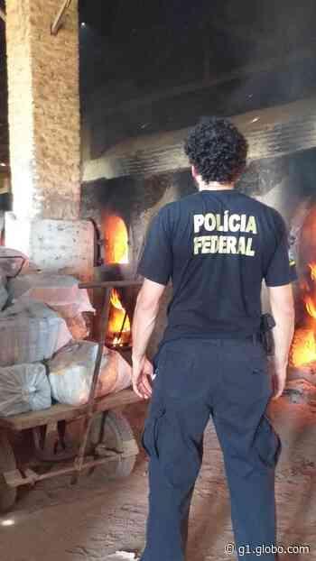 PF incinera mais de 1,6 tonelada de drogas em Aquiraz - G1